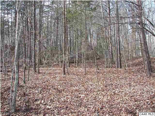 Property for sale at HAVENWOOD LN, Schuyler,  VA 22969