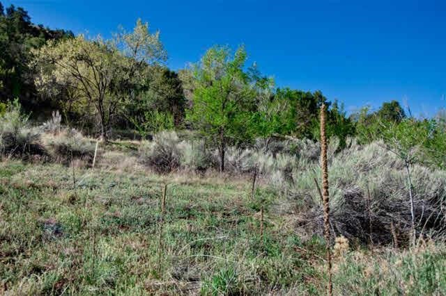 Upper Canyon Road, 4 contiguous lots