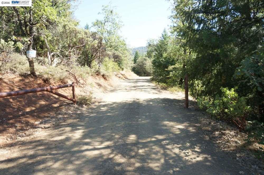 321 Black Bear Road, WEAVERVILLE, CA 96093