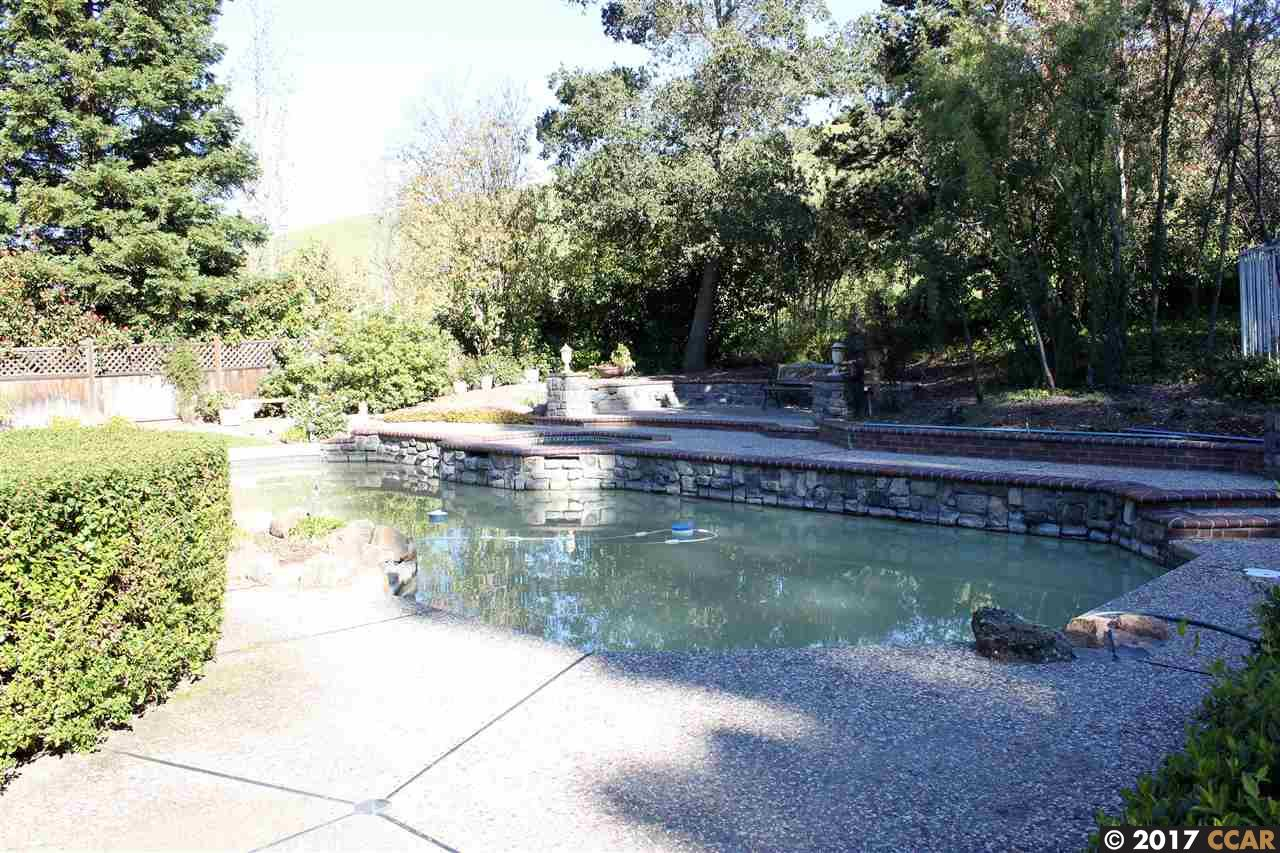 Additional photo for property listing at 5333 Blackhawk Drive  Danville, California 94506 United States