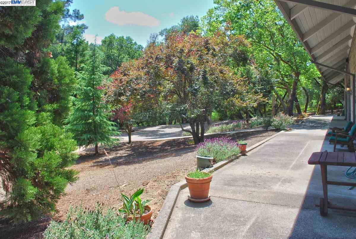 Additional photo for property listing at 17015 Cull Canyon Road  Castro Valley, California 94552 United States