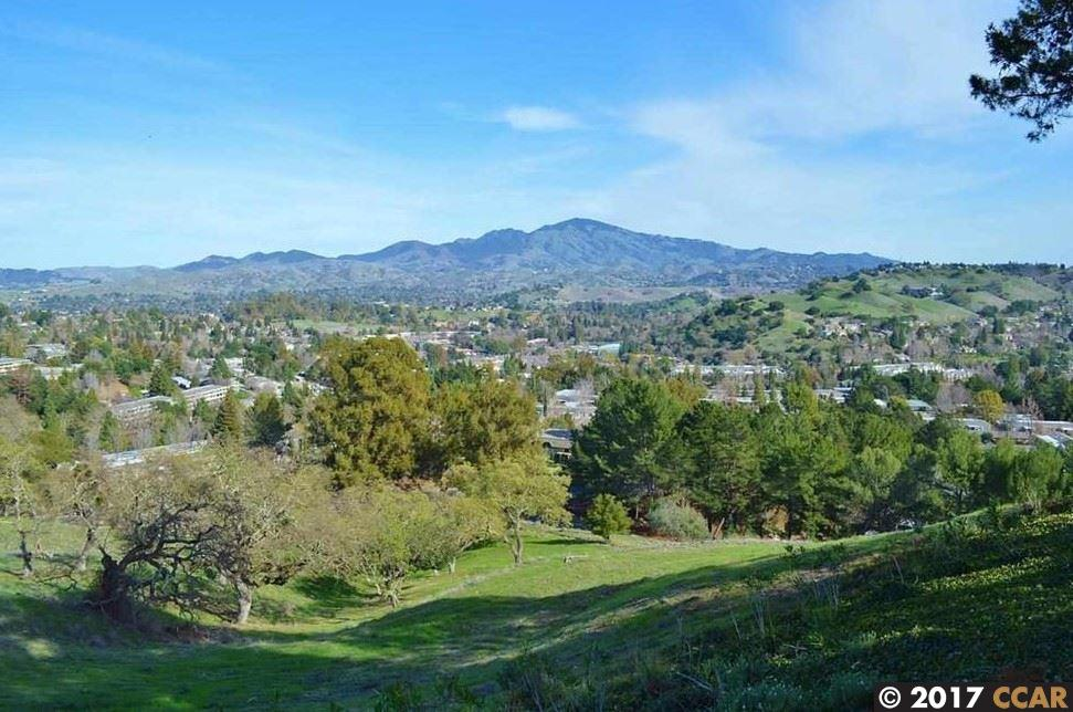 Additional photo for property listing at 2137 Skycrest  Walnut Creek, California 94595 United States