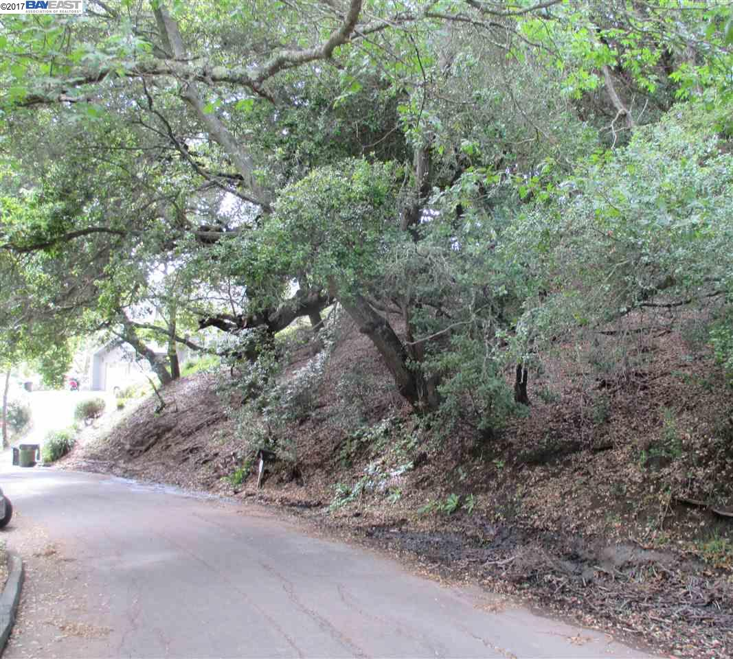 Additional photo for property listing at 79 La Espiral  Orinda, California 94563 Estados Unidos