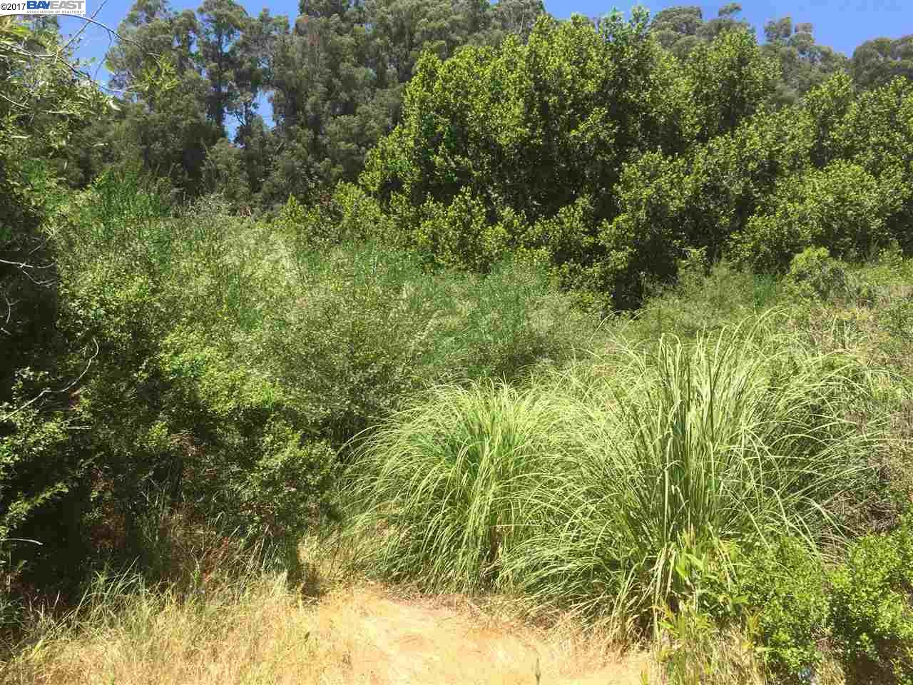 Additional photo for property listing at Fraga Road Fraga Road Castro Valley, Californie 94546 États-Unis