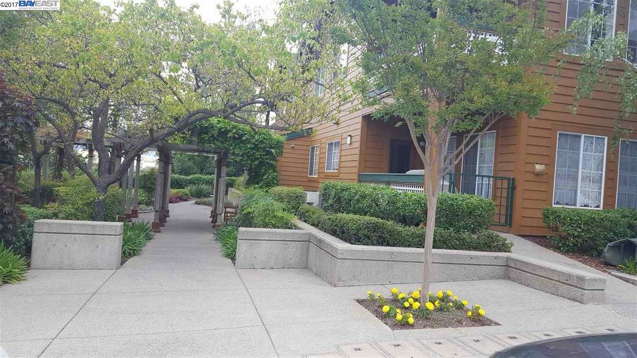 217 Stone Pine Lane, SAN RAMON, CA 94583