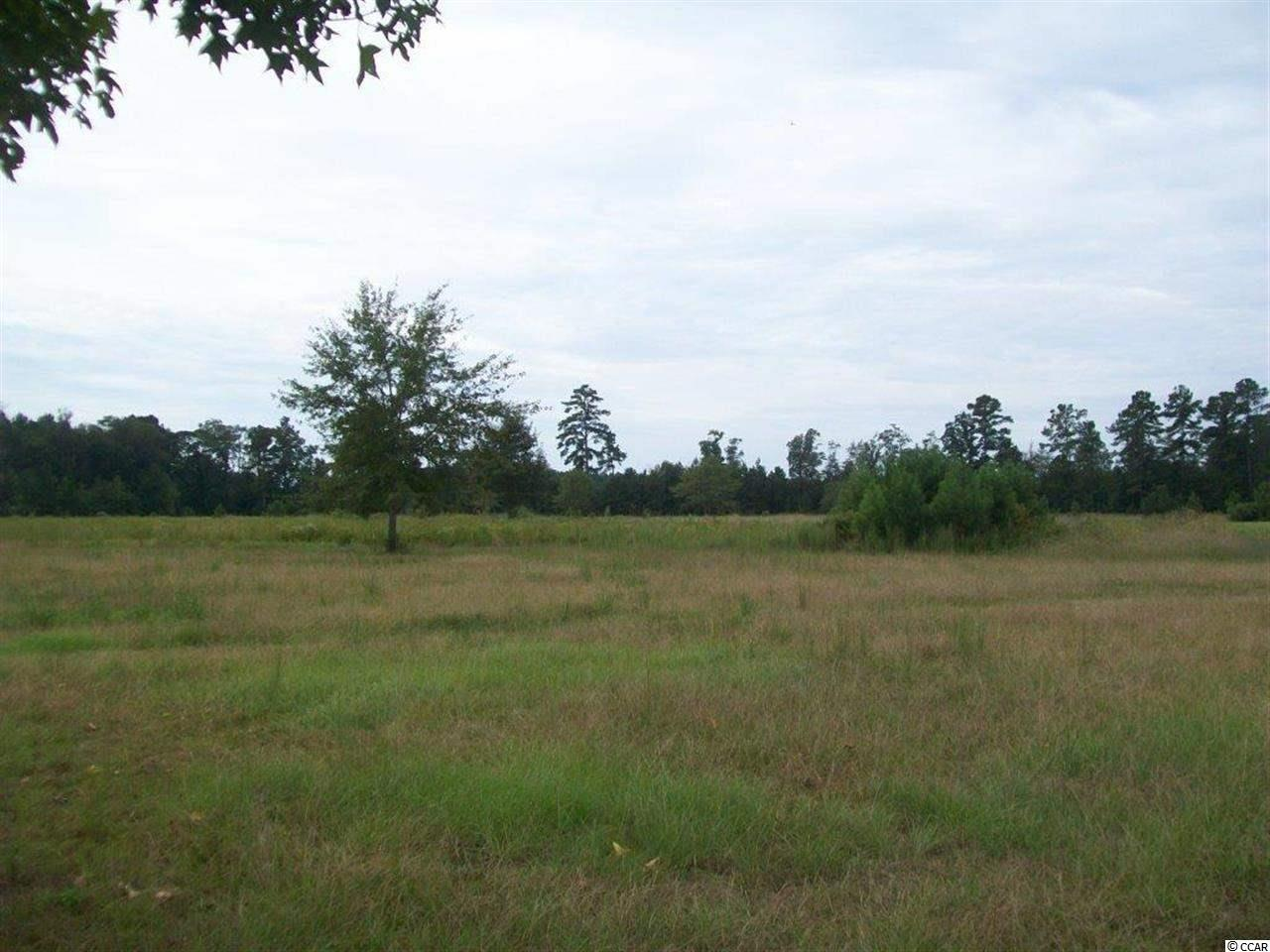 Land for Sale at TBD Canvasback Lane Andrews, South Carolina United States