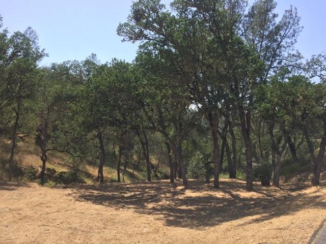 Terreno por un Venta en 2677 Pine Ridge Road 2677 Pine Ridge Road Bradley, California 93426 Estados Unidos
