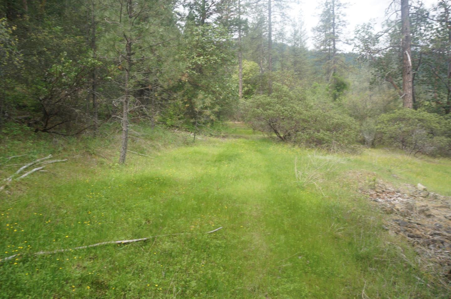 Land for Sale at 6269 Dutch Creek Road Junction City, California 96048 United States