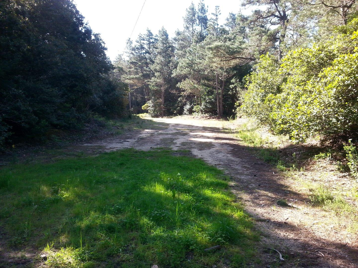Additional photo for property listing at 32395 Pearl Drive  Fort Bragg, California 95437 Estados Unidos