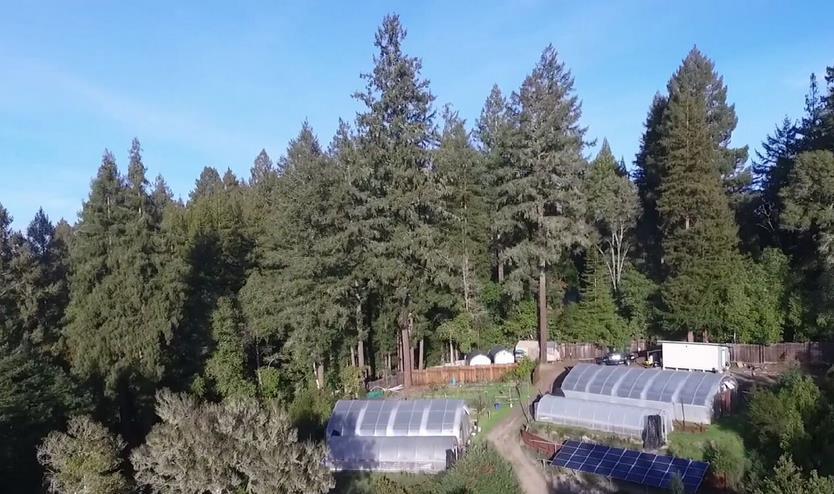 795 Redwood Road, FELTON, CA 95018
