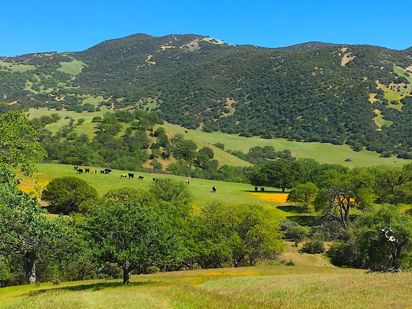 45251 Carmel Valley Road, GREENFIELD, CA 93927