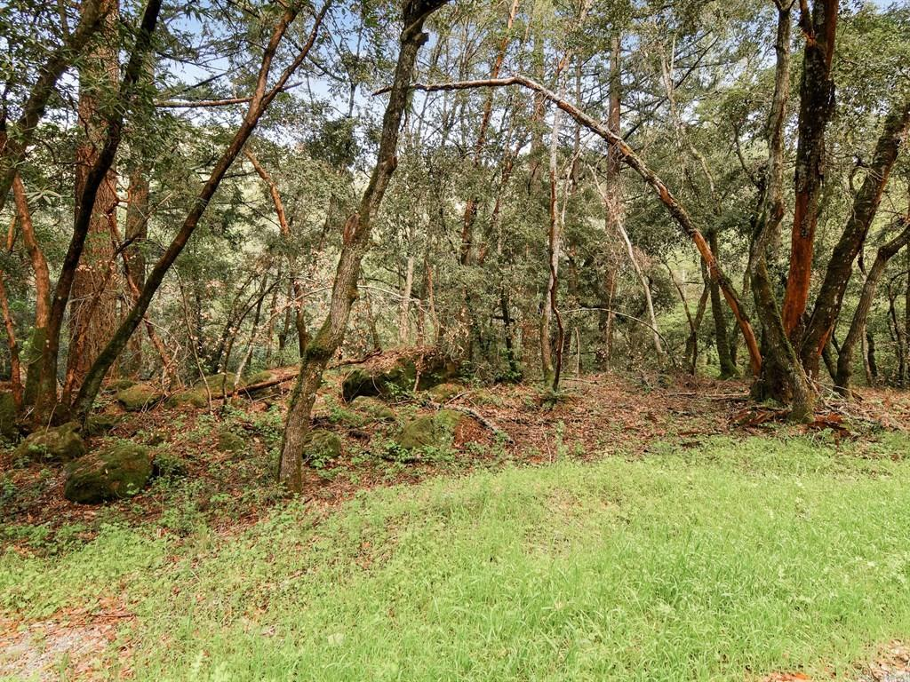 Additional photo for property listing at Sanborn Road  Saratoga, Kalifornien 95070 Vereinigte Staaten