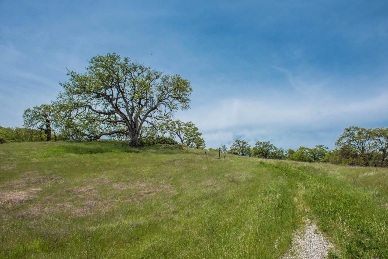 Additional photo for property listing at 23850 Lambert Flat Road  Carmel Valley, Калифорния 93924 Соединенные Штаты