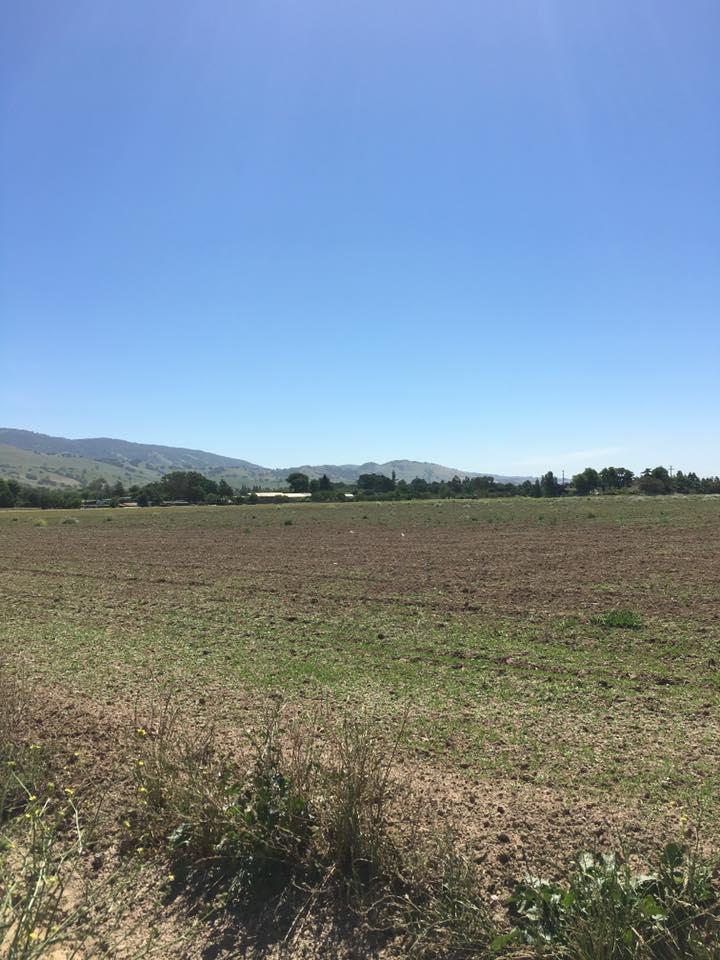 أراضي للـ Sale في 1215 E Middle Avenue San Martin, California 95046 United States