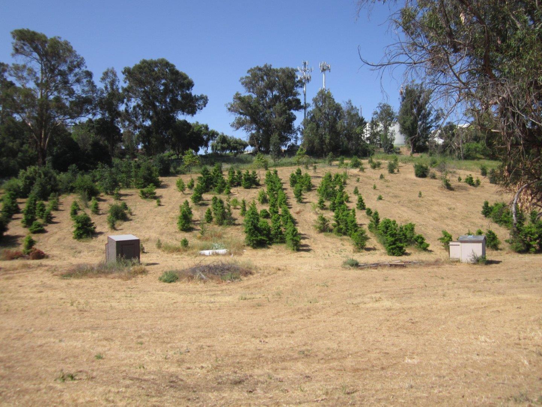 Земля для того Продажа на Park Hill Park Hill Hollister, Калифорния 95023 Соединенные Штаты