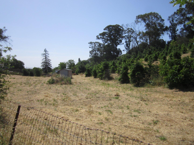 Additional photo for property listing at Park Hill Park Hill Hollister, Калифорния 95023 Соединенные Штаты