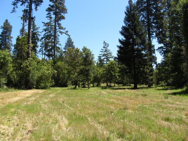 0 Woodpecker Ridge Road, SANTA CRUZ, CA 95060