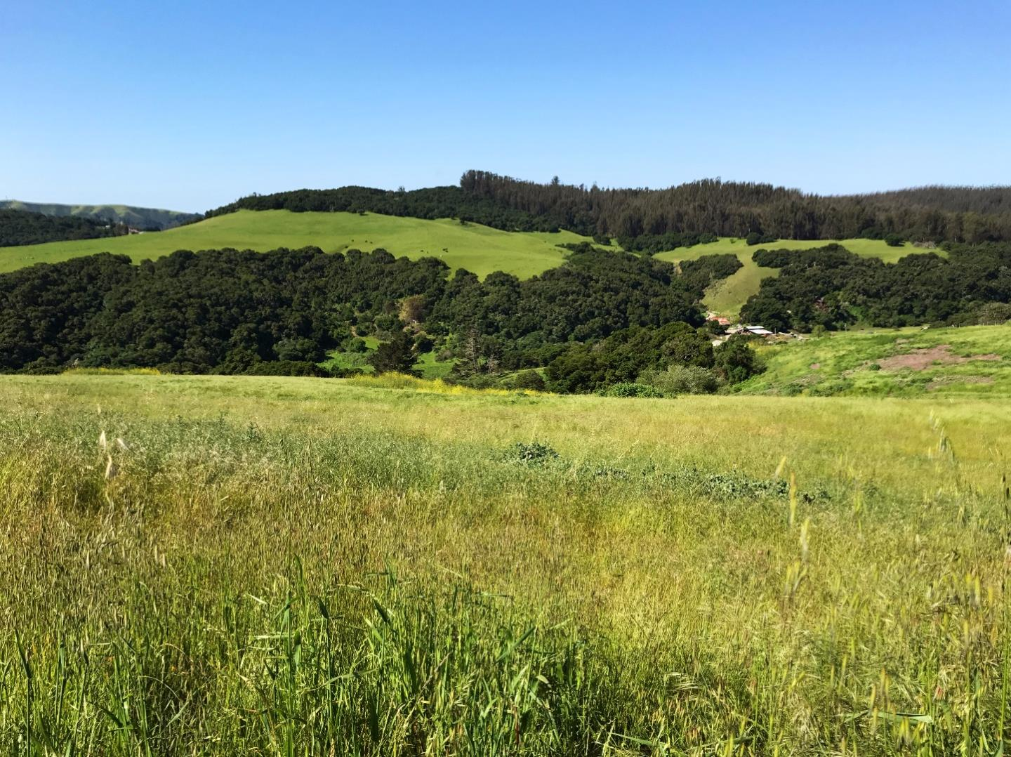 Additional photo for property listing at 2000 School Road  San Juan Bautista, California 95045 United States