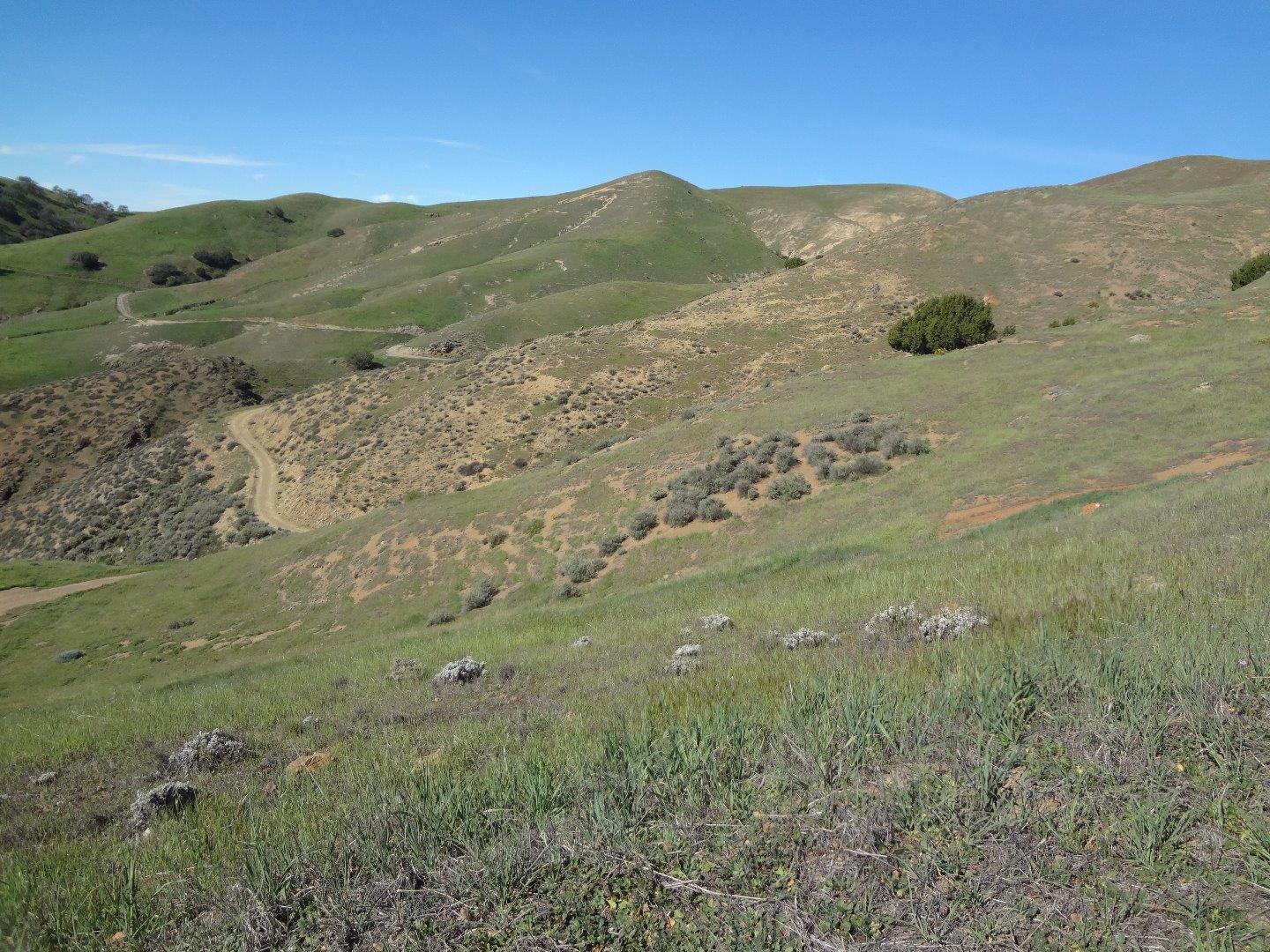 Additional photo for property listing at 20006 Panoche Road  Paicines, Californie 95043 États-Unis